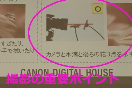 東京の無料の一眼レフ写真講座 Canon