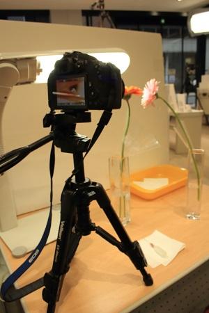 Canonマクロレンズワークショップしずくフォトの撮影体験